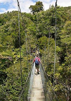 Hängebrücke im Abel Tasman National Park