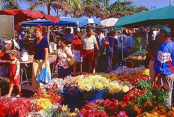 Samstagsmarkt in St.-Pierre