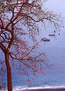 Meer bei Positano (März)