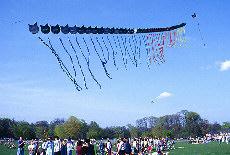 Drachenfestival im Englischen Garten in München (Juni)
