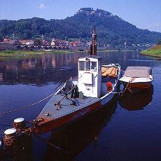 Elbe mit Burg Königstein bei Bad Schandau (Juli)