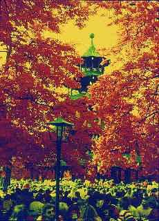 Chinesischer Turm im Englischen Garten (August)