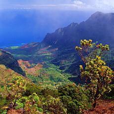 Napali Küste vom Pihea Lookout auf Kauai (Juli)