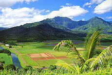 Hanalei Valley auf Kauai (Juli)