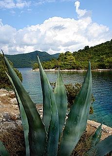 Salzwassersee auf der Insel Mljet (Februar)