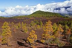 Blick von der Cumbre auf Los Llanos (Mai)