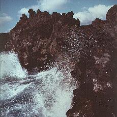 Wilde Lavavormationen bei Janubia, Lanzarote (März)
