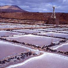 Salzgewinnung in Janubia (Januar)