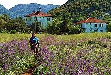 Bauersfrau auf dem Weg zum Feld bei Simena (September)