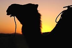 Sonnenuntergang in der Wüste bei Merzouga (September)