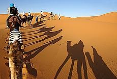 Kamelritt in den Dünen von Merzouga (August)