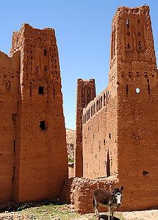 Kasbah bei Tineghir (Oktober)