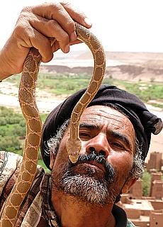 Schlangenbeschwörer in der Kasbah Ait Ben Haddou (November)