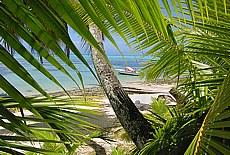 Strand nahe dem Hibiscus Hotel auf Moorea (April)