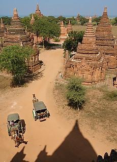 Kutschen in Bagan (Juli)