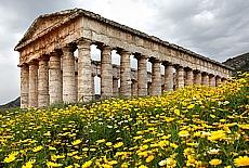 Griechischer Tempel in Segesta (September)