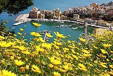 Fischerhafen von Castellamare del Golfo (Juli)