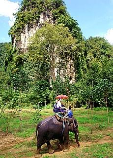 Elefantenreiten in Krabi (Februar)
