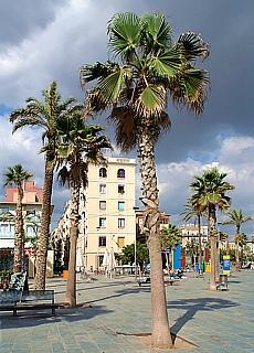 Strandpromenade mit Palmen (September)