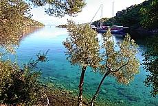 Morgenstimmung in der Bucht von Monastir (Februar)