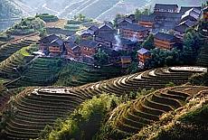 Reisterrassen von Longhsheng (Februar)