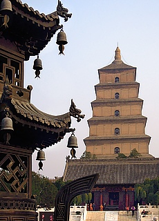 Wildganspagode in Xian (Januar)