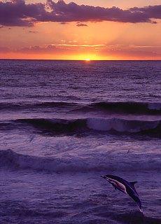 Sonnenuntergang bei Palinuro (September)