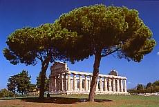 Anthike griechische Tempelstadt Paestum (März)