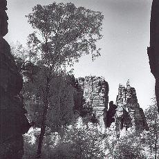 Blick von den Affensteinen auf die Brosinnadel (August)