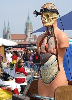 Frühlingsfest auf der Theresienwiese (Januar)