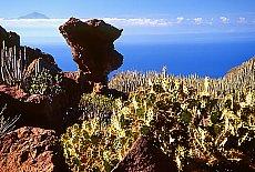 Küste bei Agaete, im Hintergrund der Teide (März)
