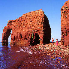 Elefant Rock auf Prinz Eduard Island (April)