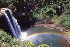 Wailua Wasserfall auf Kauai (Oktober)
