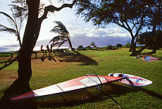 Windsurfen auf Maui (Januar)