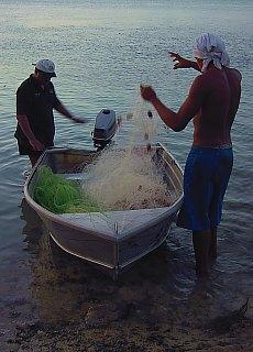 Fischer am Strand beim Hibiscus Hotel (November)