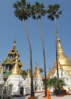 Shwedagon Pagode in Yangon (Februar)
