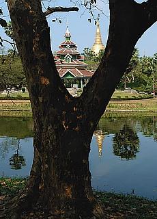 See nahe der Shwedagon Pagode (August)