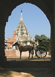 Pferdekutschen in Bagan (März)