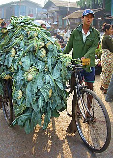 Blumenkohlhändler auf dem Markt in Hpa-an (November)