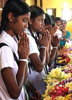 Tiefgläubige Schulmädchen im Zahntempel von Kandy (April)
