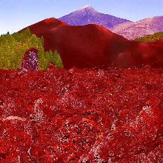 Montana Chinyero mit Blick zum Teide (März)